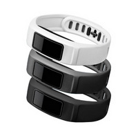 Garmin vívofit 2 Bands large